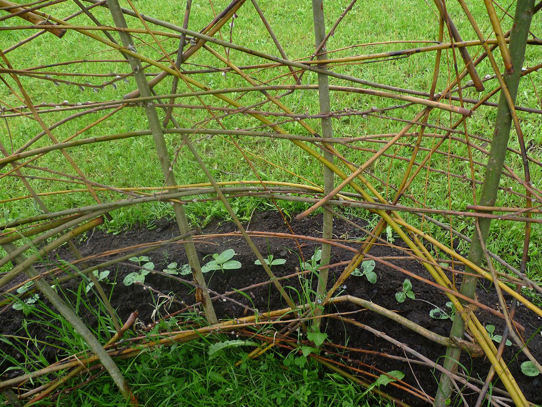 Garteninstallation Bruder Klaus Museum Sachseln 10