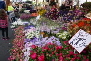 Columbia Road Flower Market_3