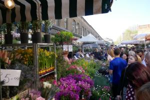Columbia Road Flower Market_4