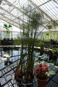 Kew Garden_5