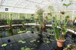 Kew Garden_6