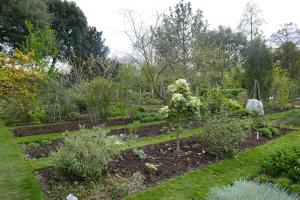 chelsea physic garden_10
