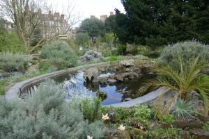 chelsea physic garden_14
