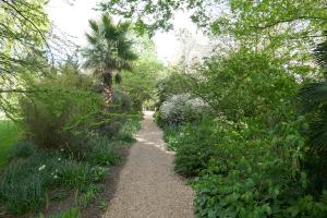 chelsea physic garden_3