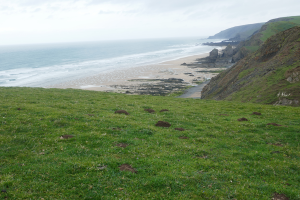 Bude to Morwenstow_9