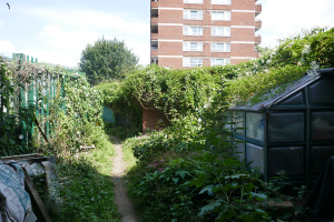 Cable Street Community Gardens_12