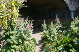 Cable Street Community Gardens_13
