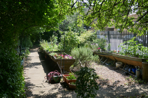 Cable Street Community Gardens_3