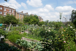 Cable Street Community Gardens_4