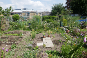 Cable Street Community Gardens_6