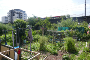 Cable Street Community Gardens_7