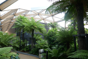 Crossrail Place Roof Garden_12
