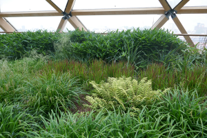 Crossrail Place Roof Garden_2