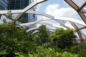 Crossrail Place Roof Garden_5