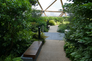Crossrail Place Roof Garden_8