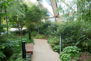 Crossrail Place Roof Garden_9