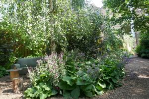 Dalston Eastern Curve Garden_15