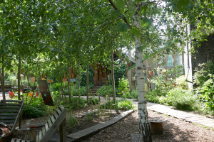 Dalston Eastern Curve Garden_7