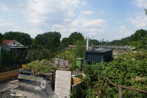 Glengall Wharf Garden_4