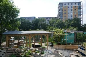 Glengall Wharf Garden_6