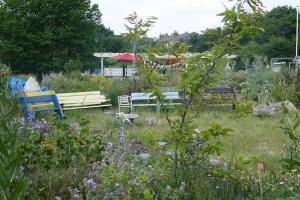 Glengall Wharf Garden_8