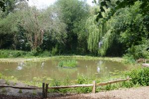 Holland Park_3