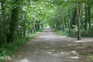 Holland Park_5