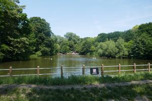 Kenwood Park_2