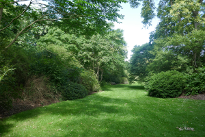 Kew Garden_1