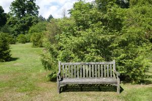 Kew Garden_18