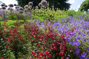 Kew Garden_29