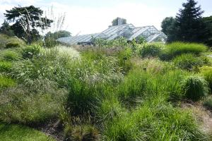Kew Garden_30