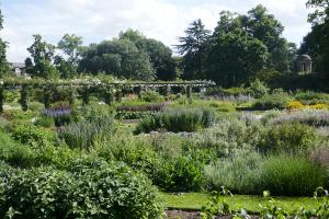 Kew Garden_35