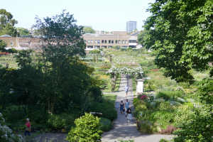 Kew Garden_36