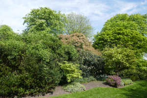 Regents Park an einem lauen Frühlingstag