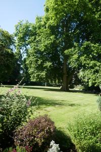 Royal Crescent Gardens_13