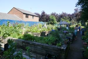 St Quintin's Community Kitchen Garden_2