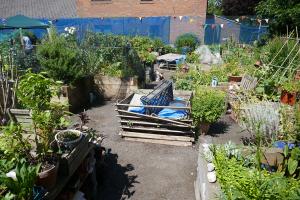 St Quintin's Community Kitchen Garden_7
