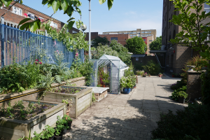 Winterton House Organic Garden