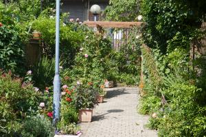 Winterton House Organic Garden_1