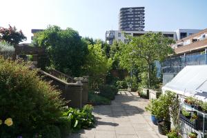 Winterton House Organic Garden_14
