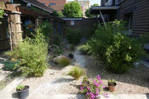 Winterton House Organic Garden_15