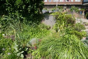 Winterton House Organic Garden_2