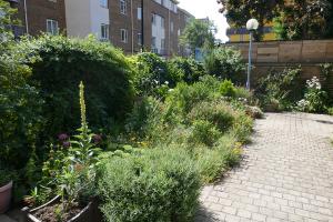 Winterton House Organic Garden_3