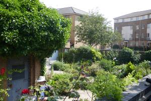 Winterton House Organic Garden_7