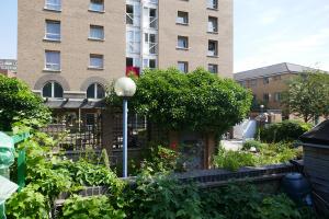 Winterton House Organic Garden_8