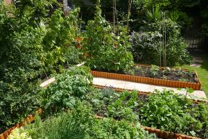 Woollen House Communal Gardens_2
