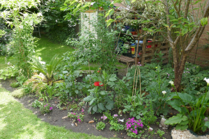 Woollen House Communal Gardens_4